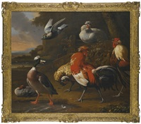 cockerels, duck, chickens and a flying pigeon in a landscape, a lake beyond by melchior de hondecoeter