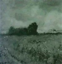 field in summer by daniel santry