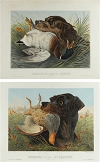 pointer rapportant une perdrix (+ griffon rapportant un canard; pair) by albert adam