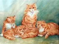 ginger cats by dorothy and elizabeth alderson
