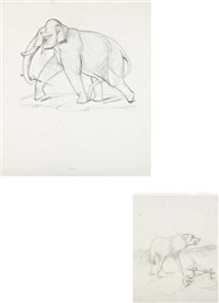 untitled (elephant study) (+ untitled (wold study); 2 works) by walton ford