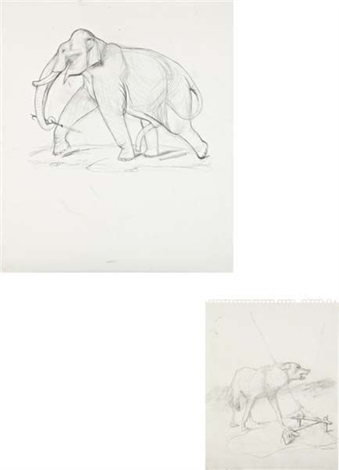 untitled elephant study untitled wold study 2 works by walton ford