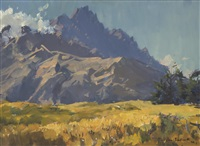 wheat crop, summer morning, the remarkables by douglas badcock