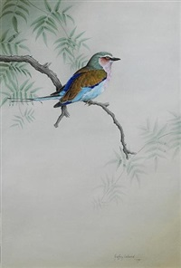 lilac cheeked kingfisher (+ little egret; 2 works) by geoffrey lockwood