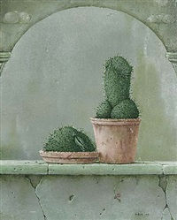 cactus by hans kanters