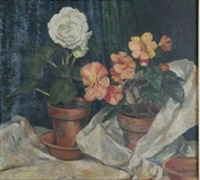 pot plants by sir daryl ernest lindsay