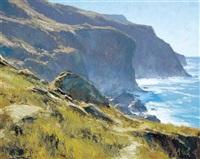 catlina coastline by matt(hew) read smith