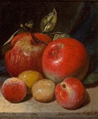 apples and plums by peter baumgras