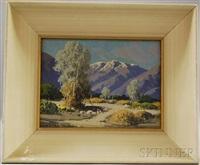 smoke trees, palm springs, california by carl sammons