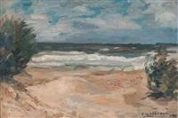 playa ventosa by carmelo de arzadún