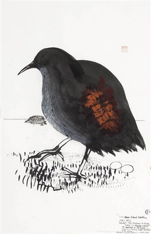 lord howe island woodhen by brett whiteley