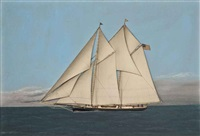 the celebrated american schooner magic under full sail by thomas h. willis