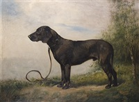 the hound by ludwig benno fay