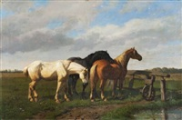 chevaux by paul van der vin
