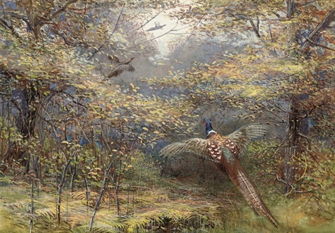 pheasants in flight by charles whymper