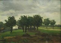 rural landscape by dan ialomiteanu