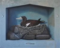 duck by graeme k. townsend