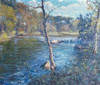 sunlit river landscape by hal robinson