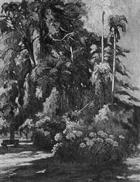 la foresta by luis caminetti