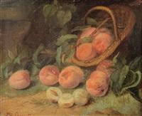 nature morte aux abricots by elie joseph laurent