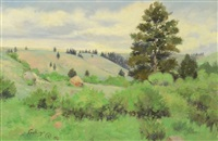 wyoming landscape by elling william gollings