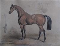 cheval à l écurie by victor-jean adam