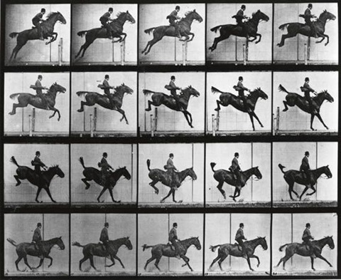 equestrian * lion and mate (2 works from animal locomotion) by eadweard muybridge