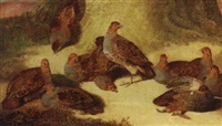 a covey of partridges beneath a tree by john bensted