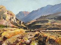 central otago landscape by douglas badcock