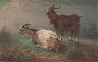 bouc et chèvre by françois simon
