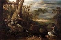 cerf, autruche, hérons, pélicans et perroquets by roelandt savery