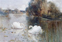 a river landscape with swans (+ another; pair) by albert e. bailey