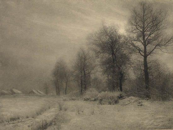 les chênes, gilly, belgium (oaks) by léonard misonne