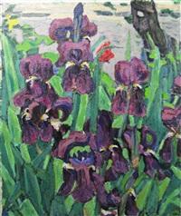 violet iris by vasile varga