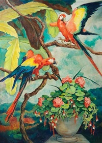 macaws by william joseph eastman