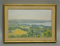 from haskell hill 1 - maine landscape by joseph fiore
