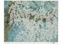 sakura blossom at sampo-in temple by chinami nakajima