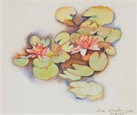 waterlilies by rita angus