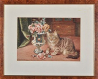 kitten and a vase of roses by wilson hepple