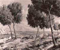 paisaje mediterraneo by enrique saborit