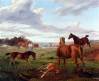 horses in extensive landscape by george thomas rope