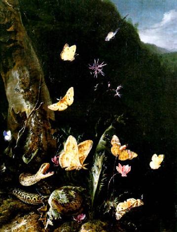 Nature Morte De Sous Bois Au Serpent Et Papillons By Otto Marseus Van Schrieck On Artnet