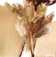 bunga by dadung ma
