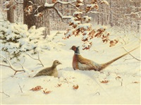 pheasants by owen j. gromme