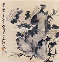 菊花奇石图 by xu wei