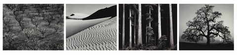portfolio four what majestic word in memory of russel varian portfolio of 15 by ansel adams