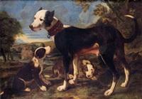 une chienne et ses petits sur fond de paysage by michelangelo di campidoglio