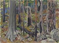 kaskimetsä (burnt forest) by akseli valdemar gallen-kallela