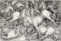 group of seven wild horses by hans baldung grien