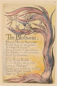 the blossom by william blake